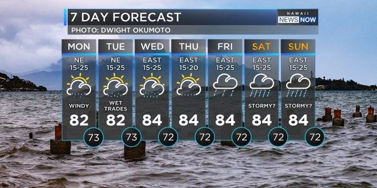 Forecast: Showers, breezy weather to dominate the week