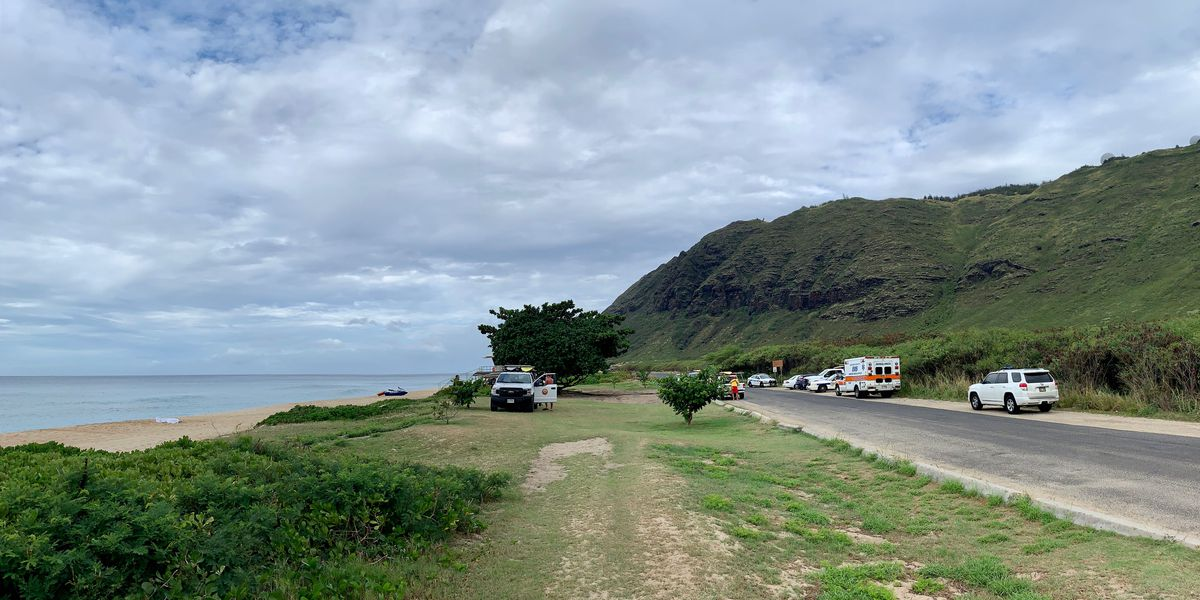 2 who drowned after being swept out to sea off Kaena Point are identified