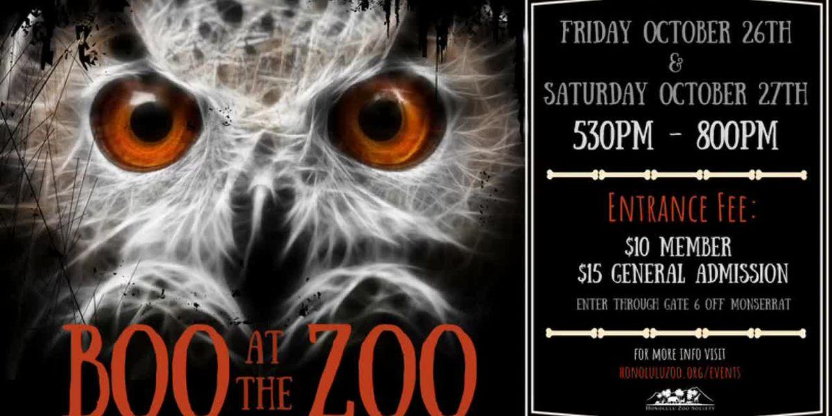 "Honolulu Zoo's ""Boo at the Zoo"" event"