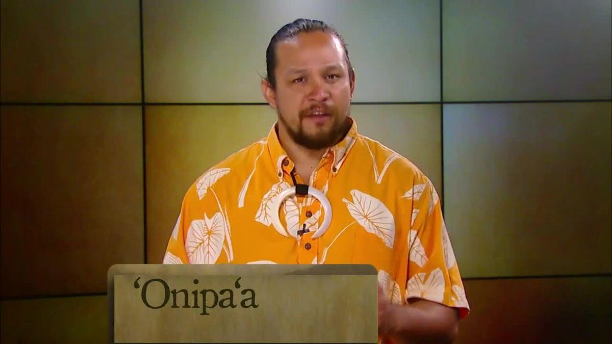Hawaiian Word of the Day: Onipaʻa