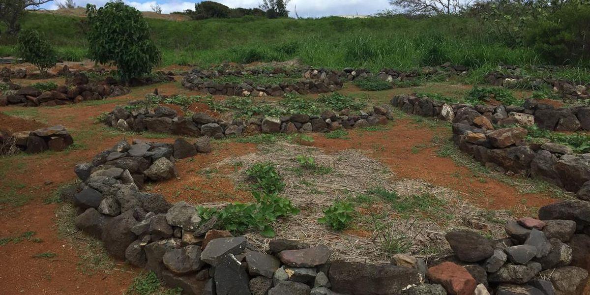 PHOTOS: Kaho'olawe, The Sacred Island