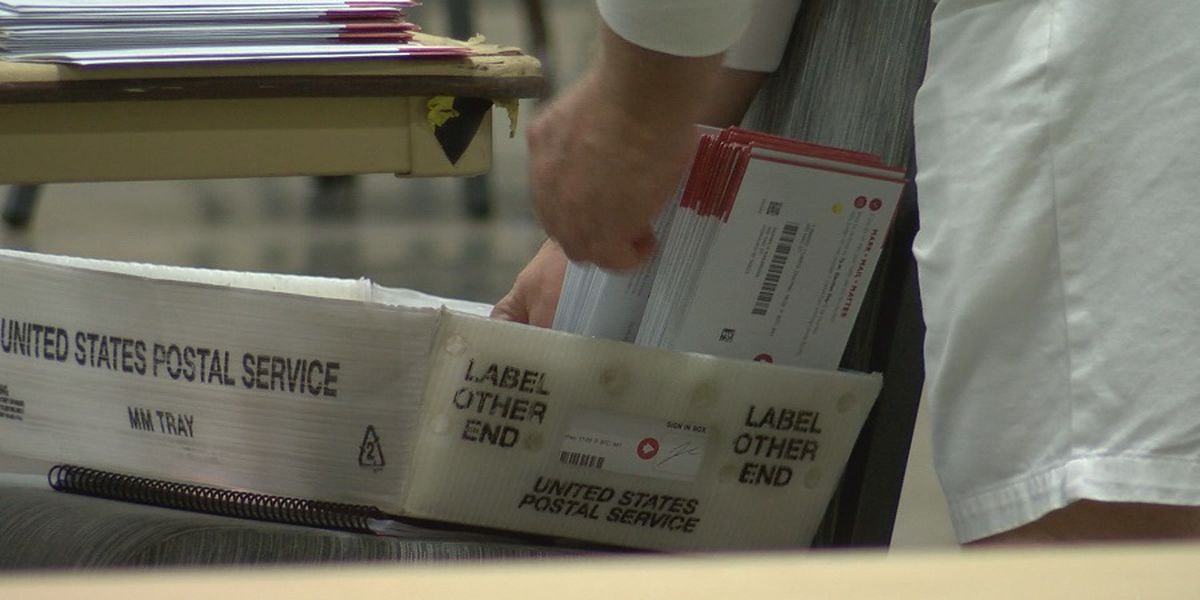 Majority of Hawaii County primary ballots submitted by mail
