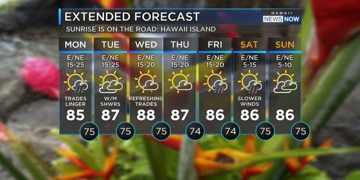 Forecast: Breezy trade winds to linger for the next few days