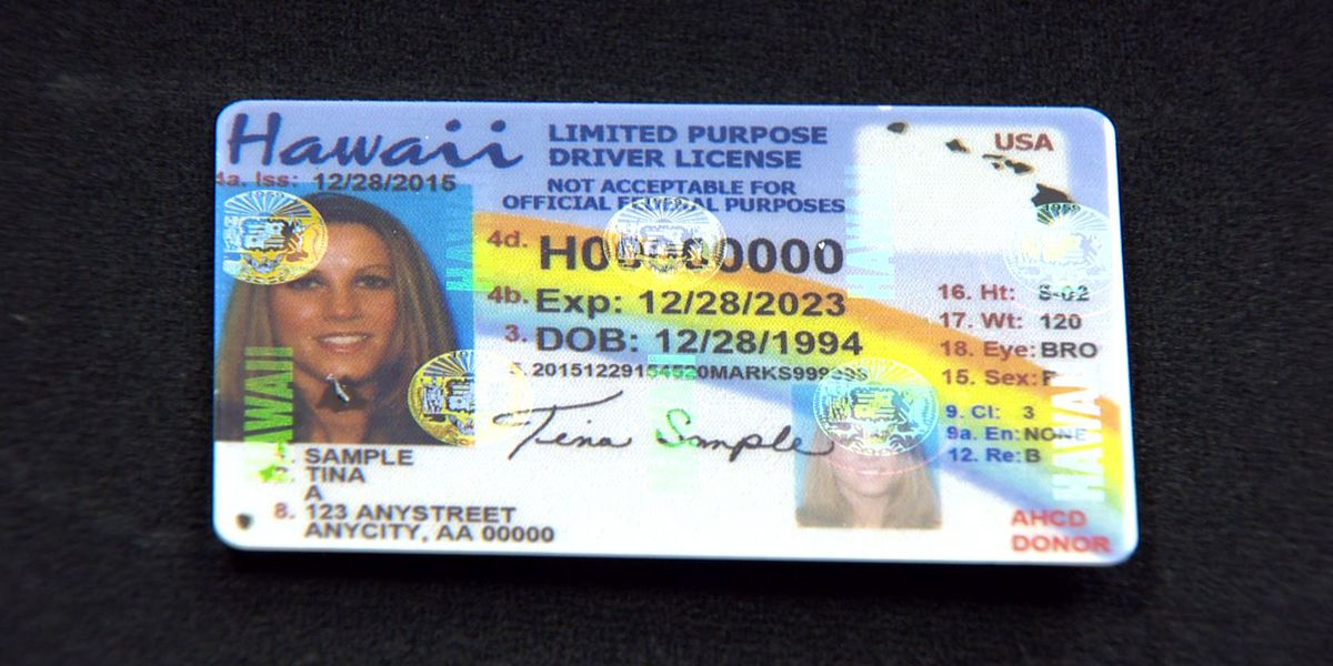 Deadline extended to renew driver licenses, IDs and permits