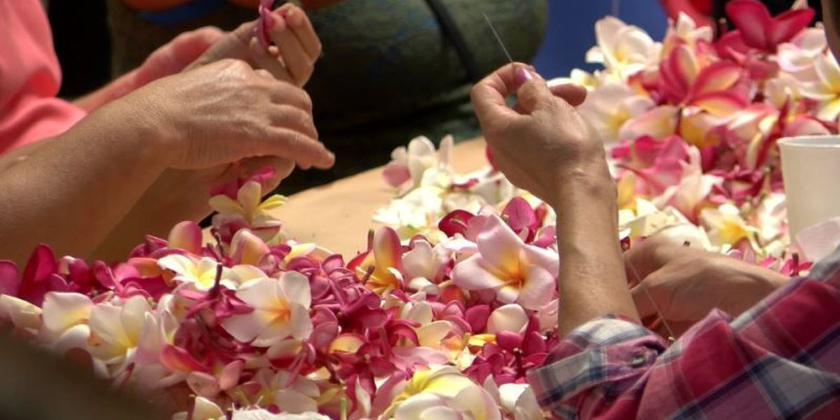 Ti leaves, flower donations wanted in lei-making workshops for Hokulea's homecoming