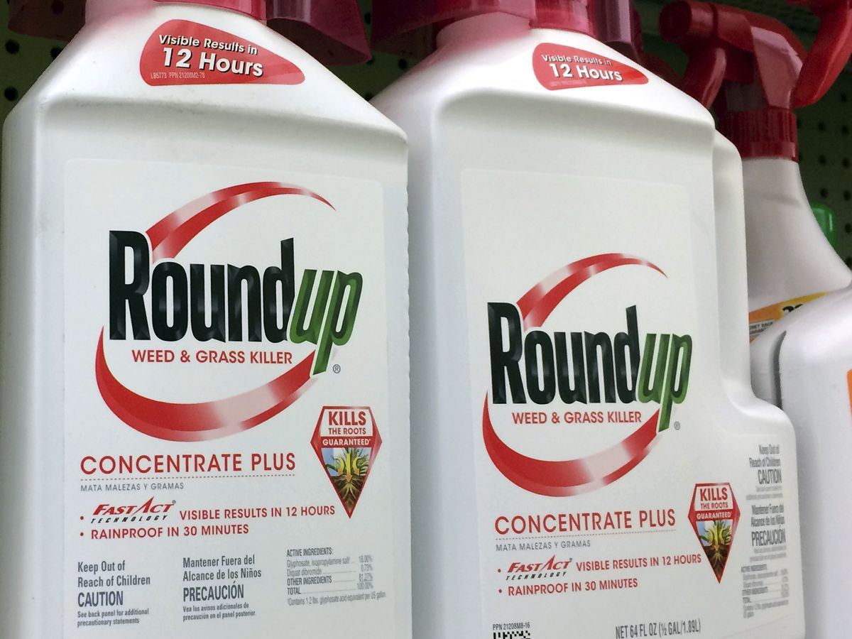 Armed with new rulings, lawmakers to once again seek Roundup ban