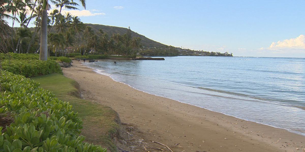 Portlock residents asked to cut back vegetation for public beach access