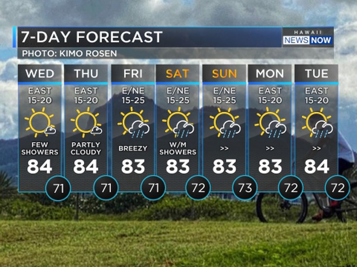 Forecast: Breezy conditions to hold through the weekend