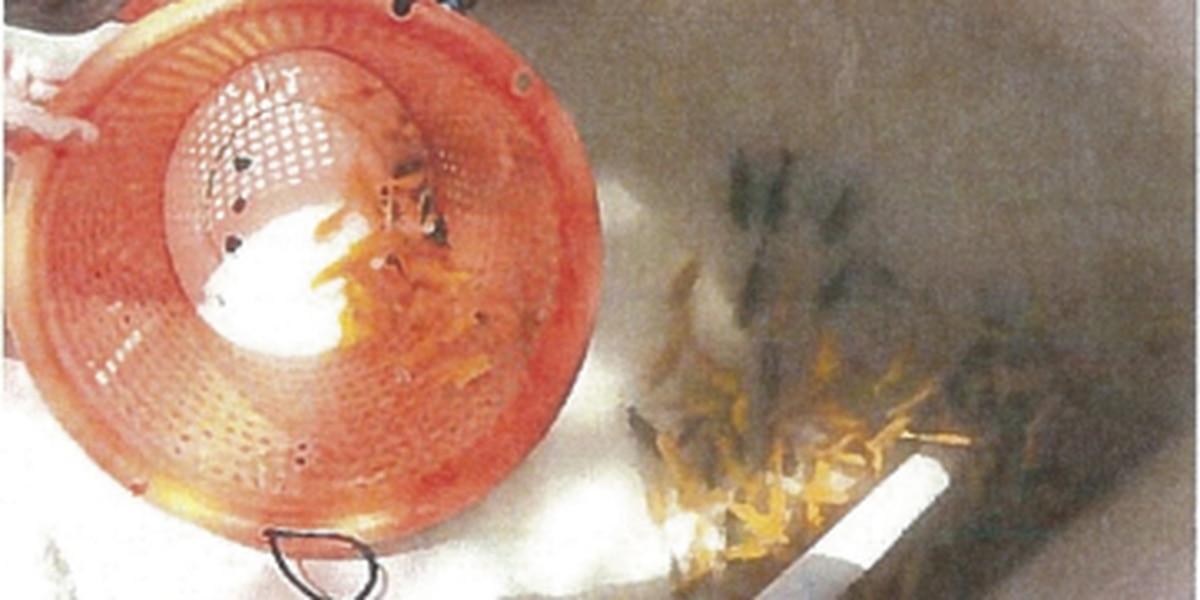 DLNR proposes $100K in fines for 3 alleged aquarium fish poachers
