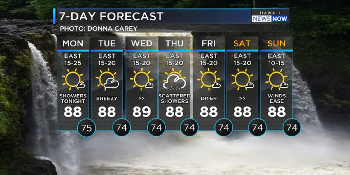 Forecast: Brisk trade winds to hold through the week