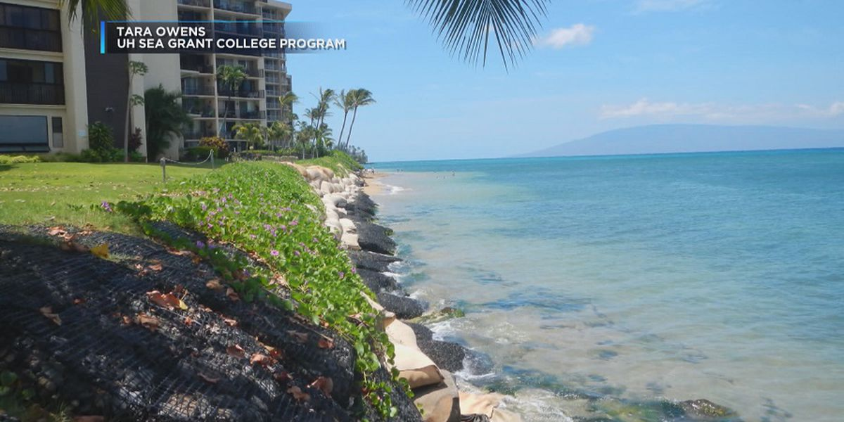 New tax district could help fund Maui erosion restoration