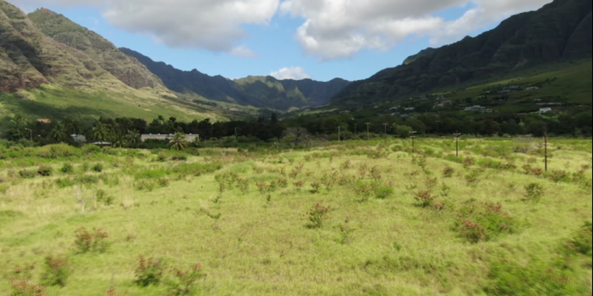 Finances grim for Chinese developer who owns 100s of acres in Makaha Valley