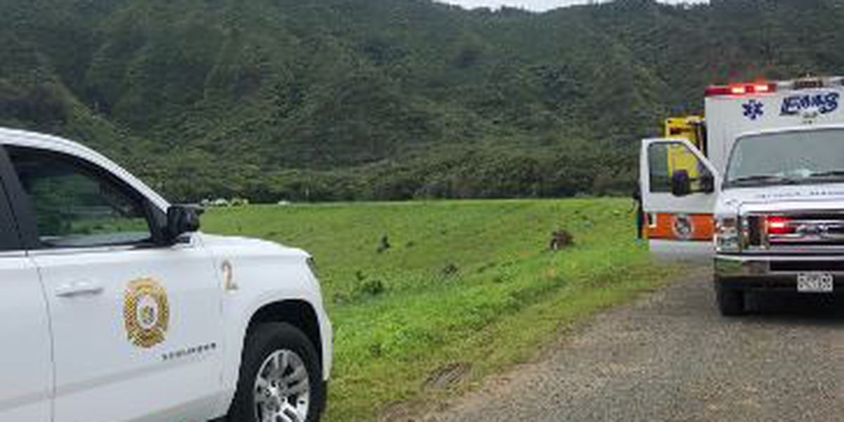 Chopper makes hard landing in Nuuanu after reporting engine failure