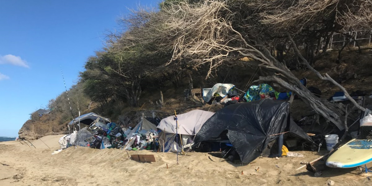 Drone image captures hidden homeless camps that dot Oahu's south shore