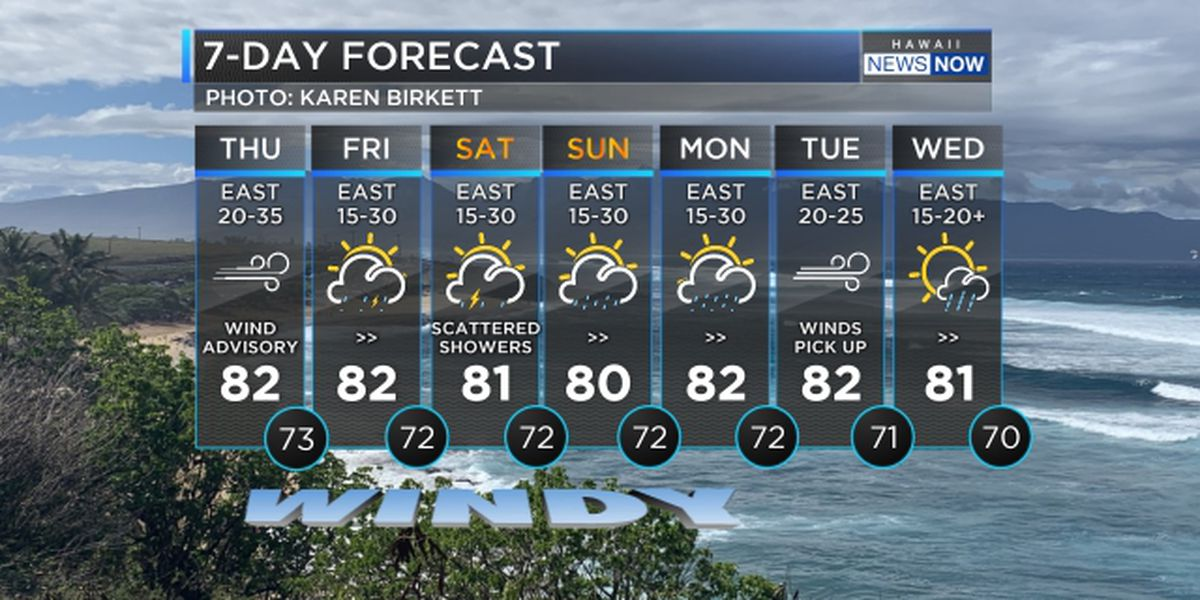 Forecast: Windy, wet weather to persist into the weekend