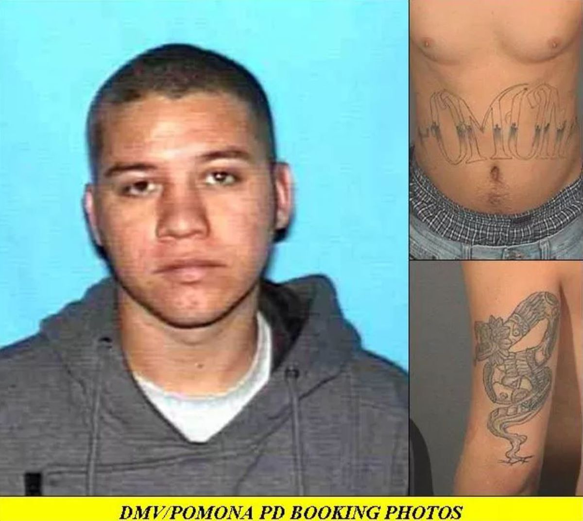 A known CA gang member may be on the run in Hawaii after a