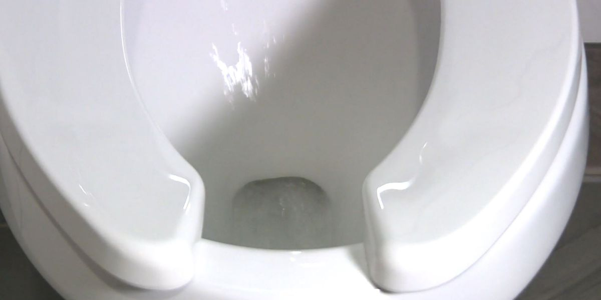 Scientists developing 'smart toilet' to collect health data