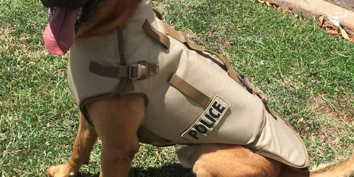 Protective K9 vests donated to the Honolulu Police Department