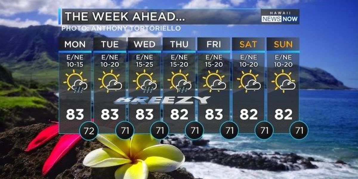 Forecast: Trade winds, showers to start the work week