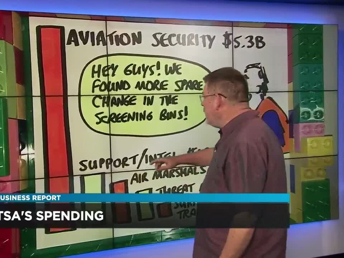 Business Report: TSA finances
