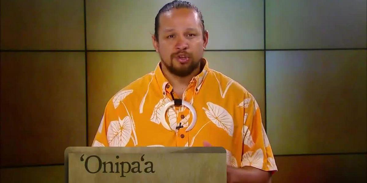 Hawaiian word of the day: Onipa'a