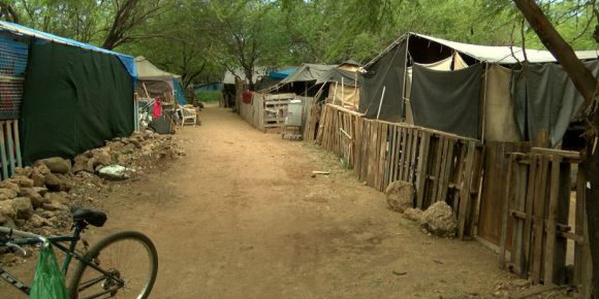 Lawmakers ask: Is it time to take another look at homeless safe zones?