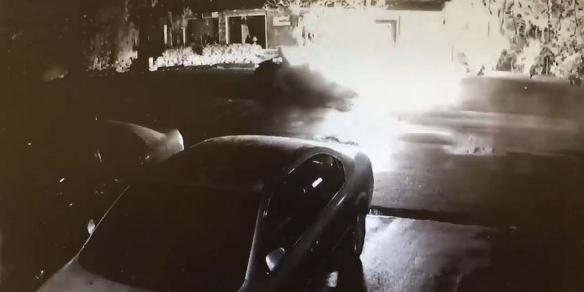 Arson investigation opened after a burning car is steered to a Kakaako storefront