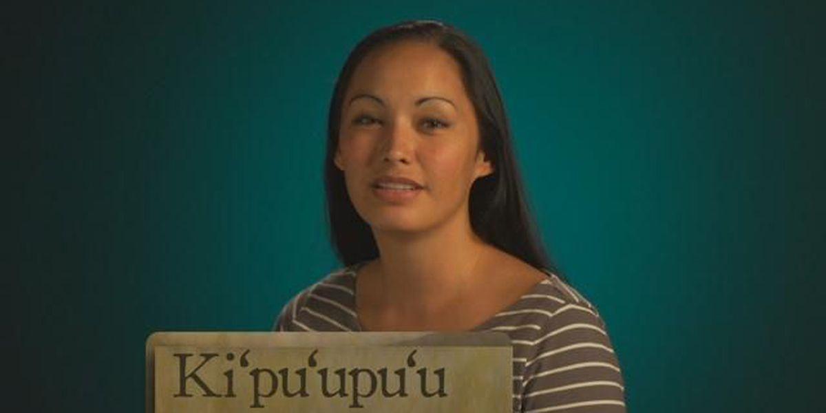 Hawaiian Word of the Day: Ki'pu'upu'u
