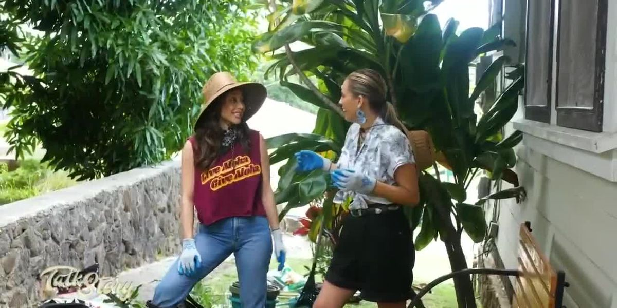 Holly Tomita teaches McKenna how to grow a small space garden at her hale