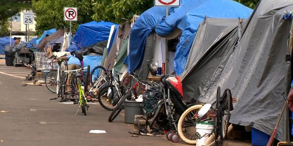 State officials: Majority of Kaka'ako homeless are COFA migrants