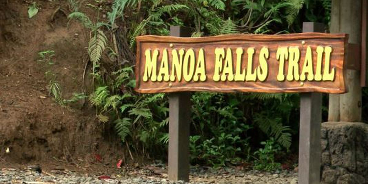 HFD rescues hiker from Manoa Falls trail