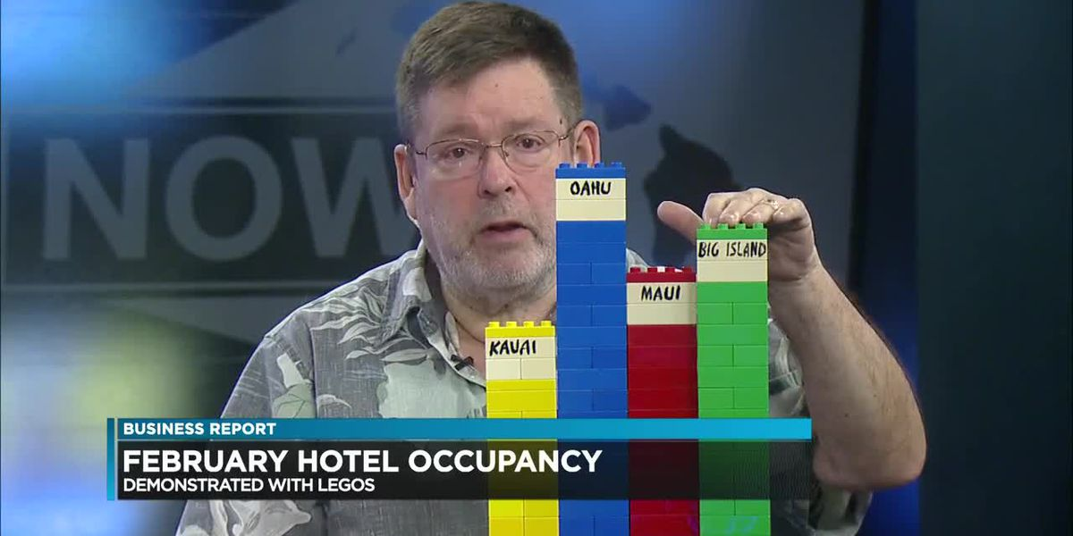 Business Report: February hotel occupancy