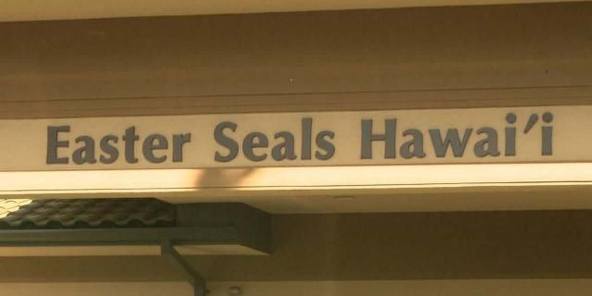Ransomware hackers target Easter Seals Hawaii