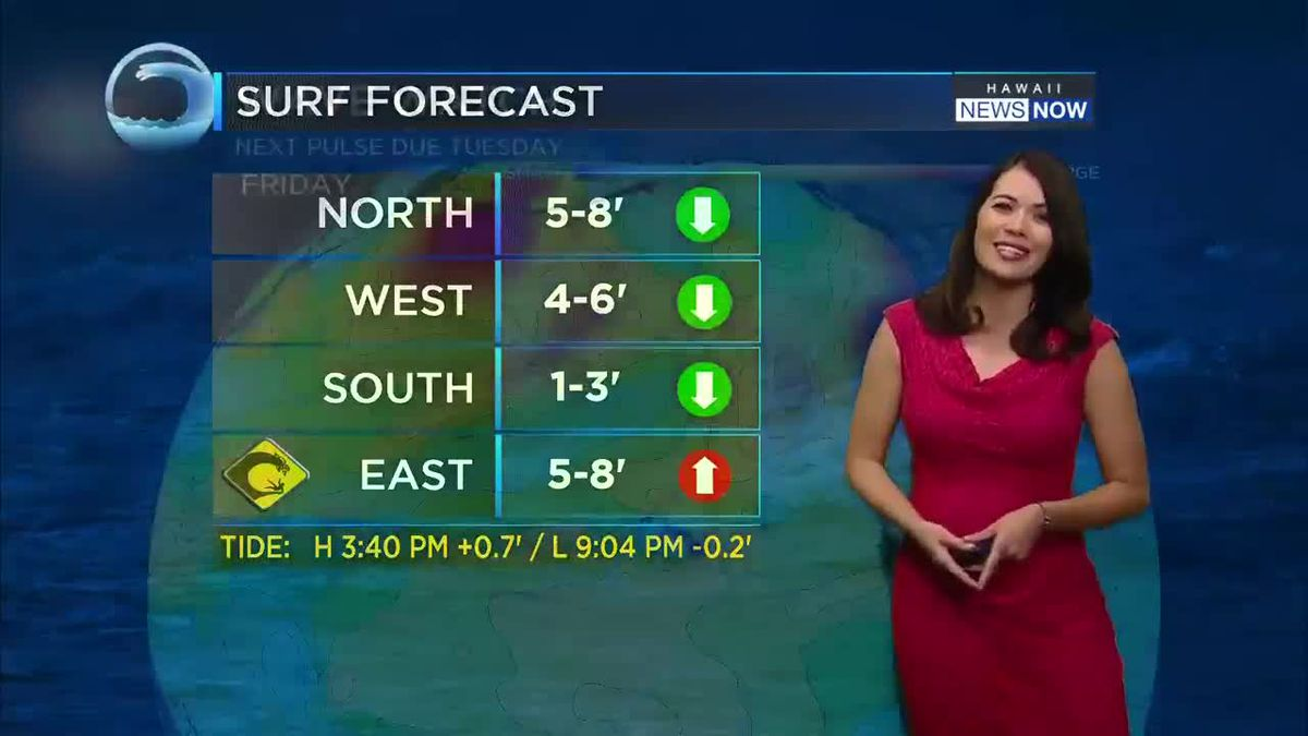 First weekend of the year brings pleasant weather, cool winds