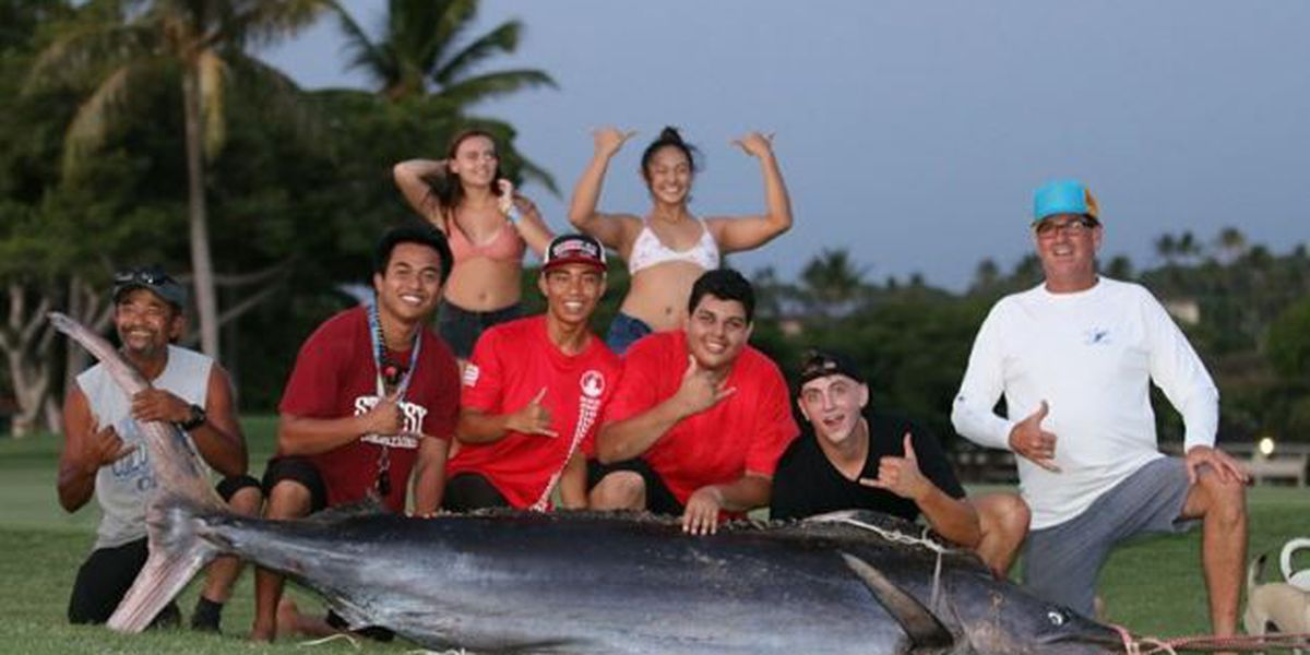 Hanapaa! Father, son hook 433 lb marlin from shore