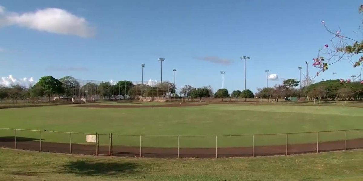 As outdoor sports resume, Oahu youth baseball league caught in a pickle