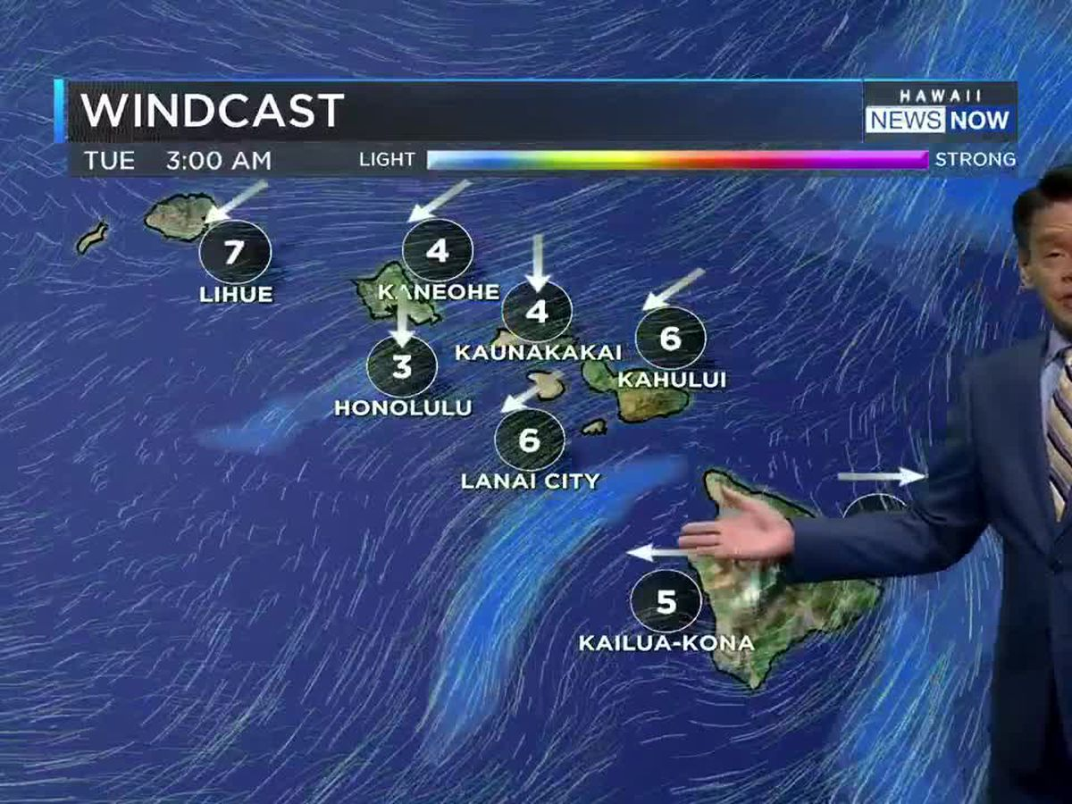 Forecast: Light winds to dominate the coming work week
