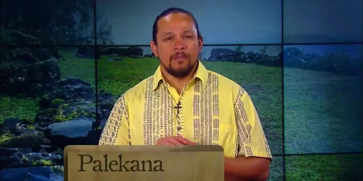Hawaiian Word of the Day: Palekana