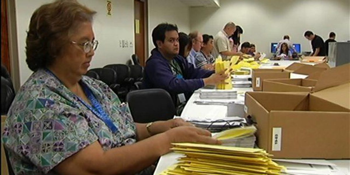 Voters now have the option of permanent mail in ballot