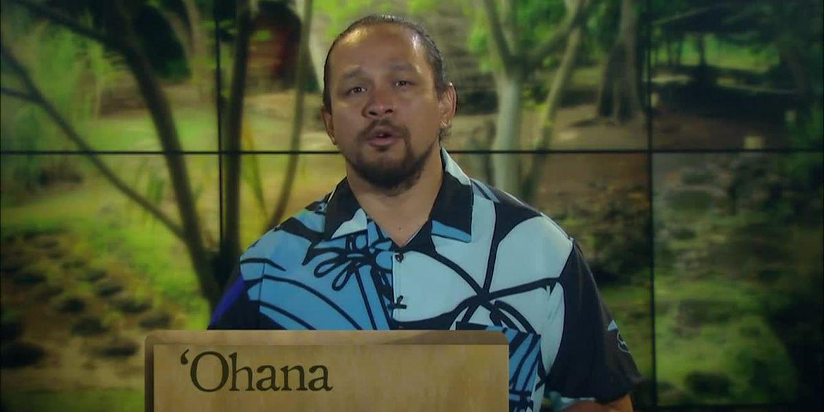 Hawaiian Word of the Day: Ohana