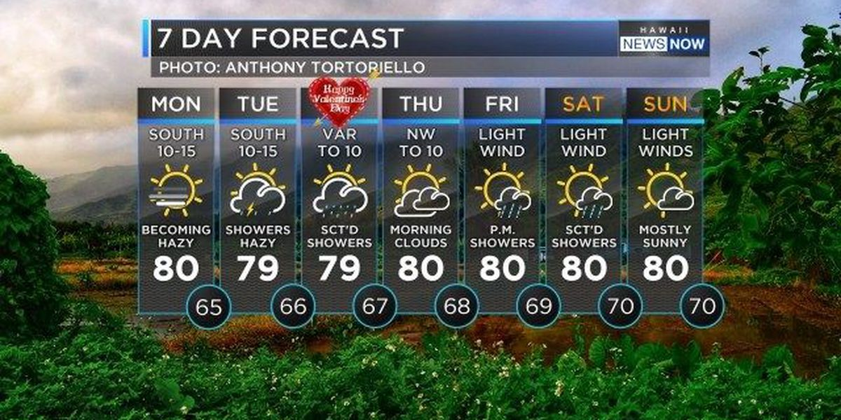 Forecast: Winds to turn south, with possible thunderstorms ahead