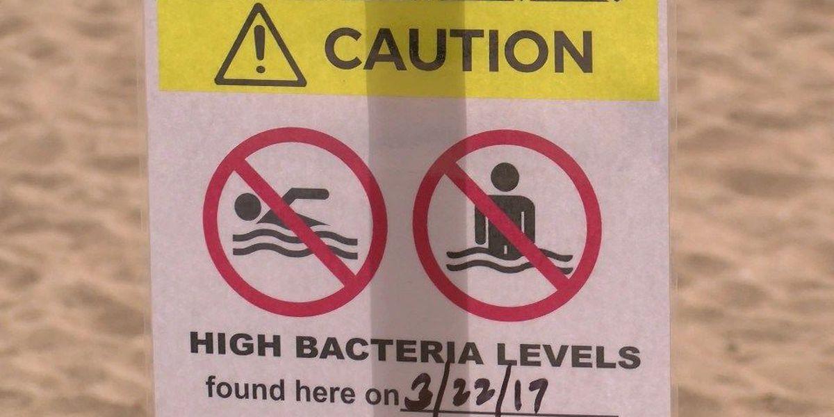 High bacteria levels found at popular Waikiki beach