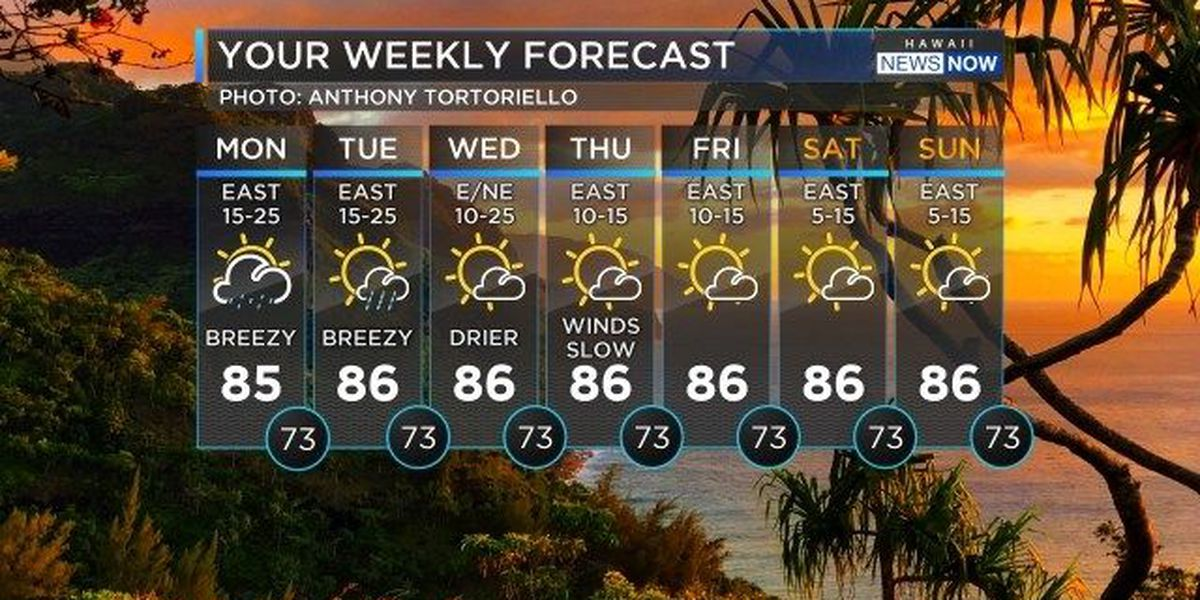 Forecast: Breezy trade winds to kick off work week