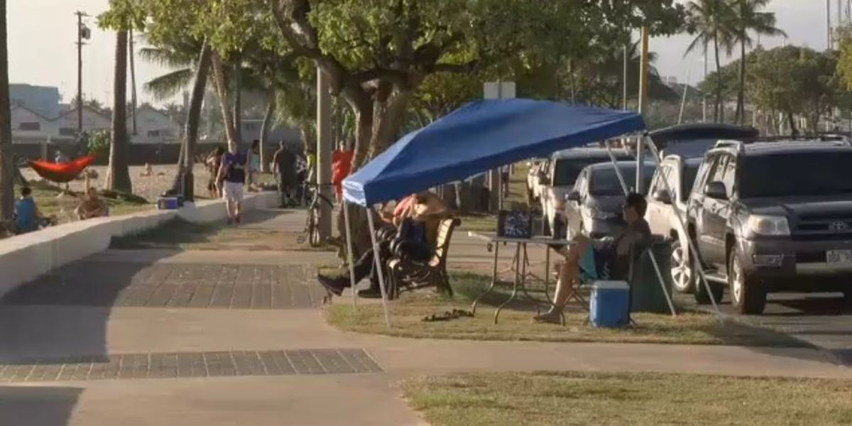 Late comments on Ala Moana park proposal won't be in final report after all