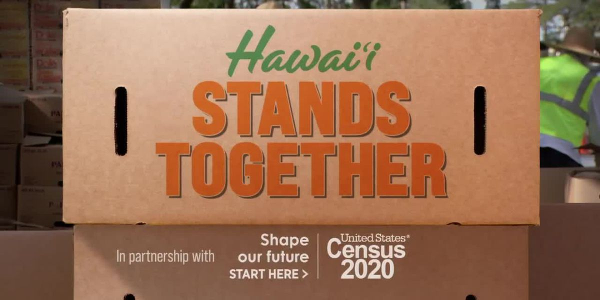 Hawaii Stands Together highlights nonprofits, business, government, neighbor islands
