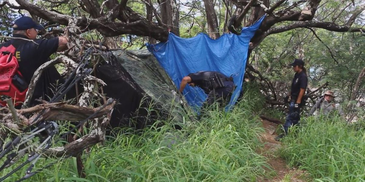 State crews clear out more than 30 homeless camps at Diamond Head