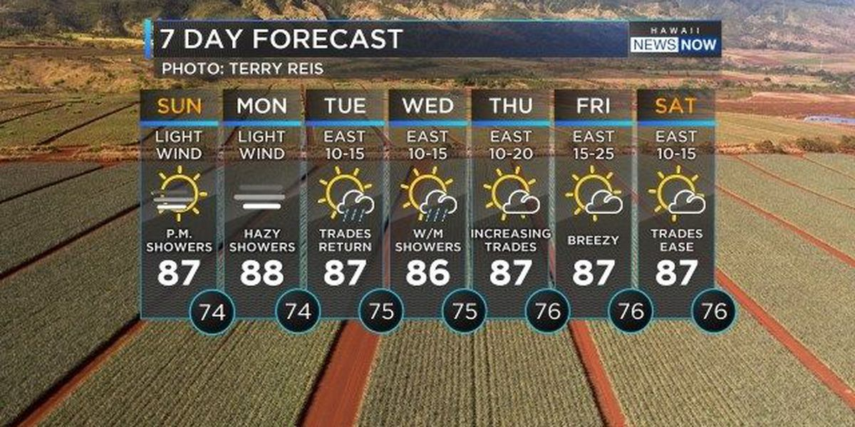 Forecast: Hot hazy and humid, and maybe more showers