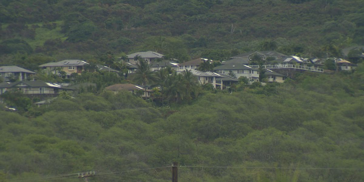 Hawaii County mayor clarifies vacation rental reopening rule