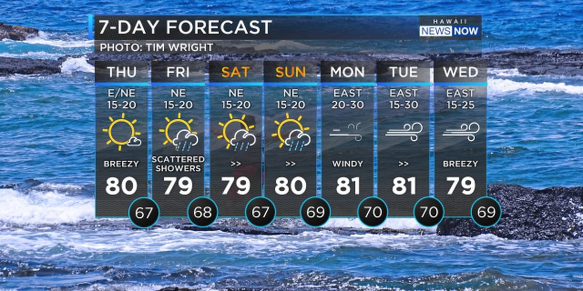 Forecast: Soggy conditions due for the weekend