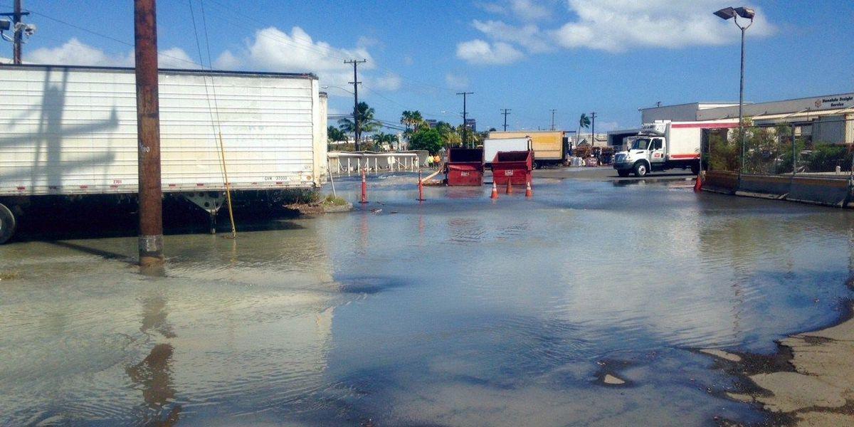 Crews responding to water main break on Nimitz Hwy.